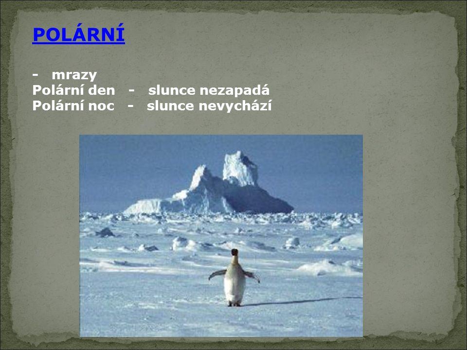 POLÁRNÍ - mrazy Polární den - slunce nezapadá Polární noc - slunce nevychází