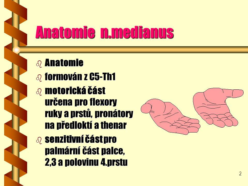 2 Anatomie n.medianus b Anatomie b formován z C5-Th1 b motorická část určena pro flexory ruky a prstů, pronátory na předloktí a thenar b senzitivní část pro palmární část palce, 2,3 a polovinu 4.prstu