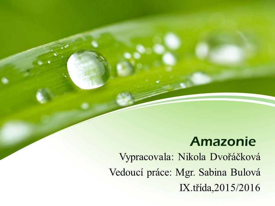 Amazonie Vypracovala: Nikola Dvořáčková Vedoucí práce: Mgr. Sabina Bulová IX.třída,2015/2016