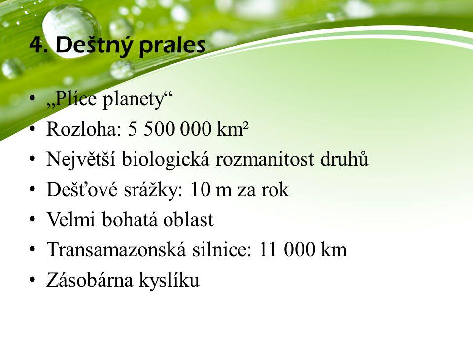 """4. Deštný prales """"Plíce planety"""" Rozloha: 5 500 000 km² Největší biologická rozmanitost druhů Dešťové srážky: 10 m za rok Velmi bohatá oblast Transama"""