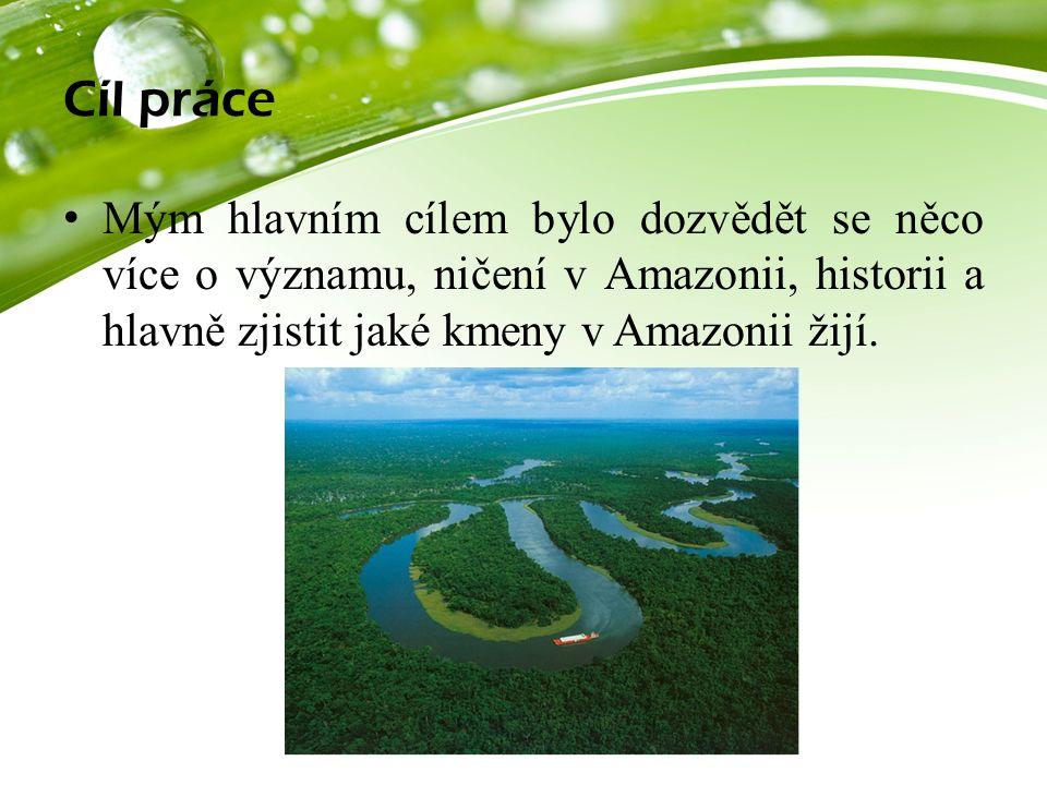 Cíl práce Mým hlavním cílem bylo dozvědět se něco více o významu, ničení v Amazonii, historii a hlavně zjistit jaké kmeny v Amazonii žijí.