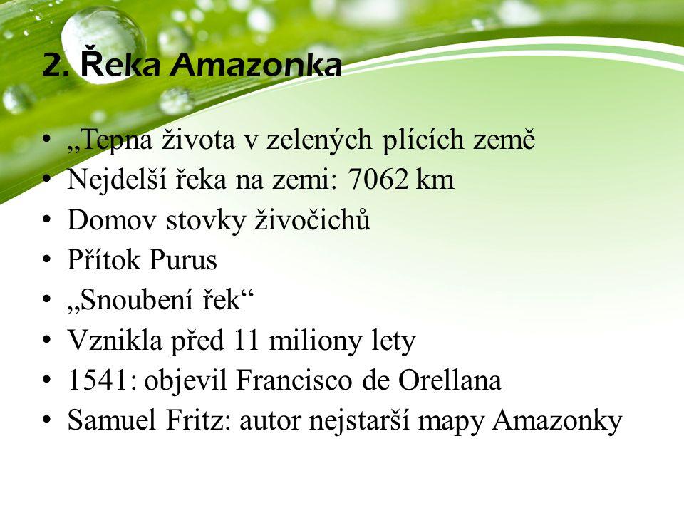 """2. Ř eka Amazonka """"Tepna života v zelených plících země Nejdelší řeka na zemi: 7062 km Domov stovky živočichů Přítok Purus """"Snoubení řek"""" Vznikla před"""