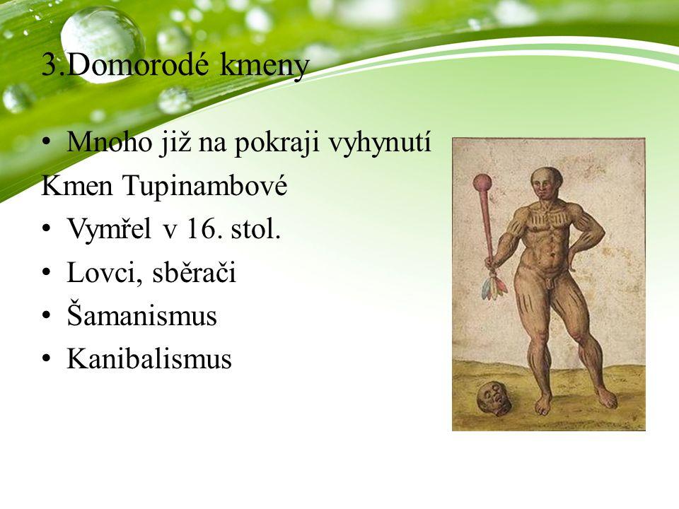 3.Domorodé kmeny Mnoho již na pokraji vyhynutí Kmen Tupinambové Vymřel v 16. stol. Lovci, sběrači Šamanismus Kanibalismus