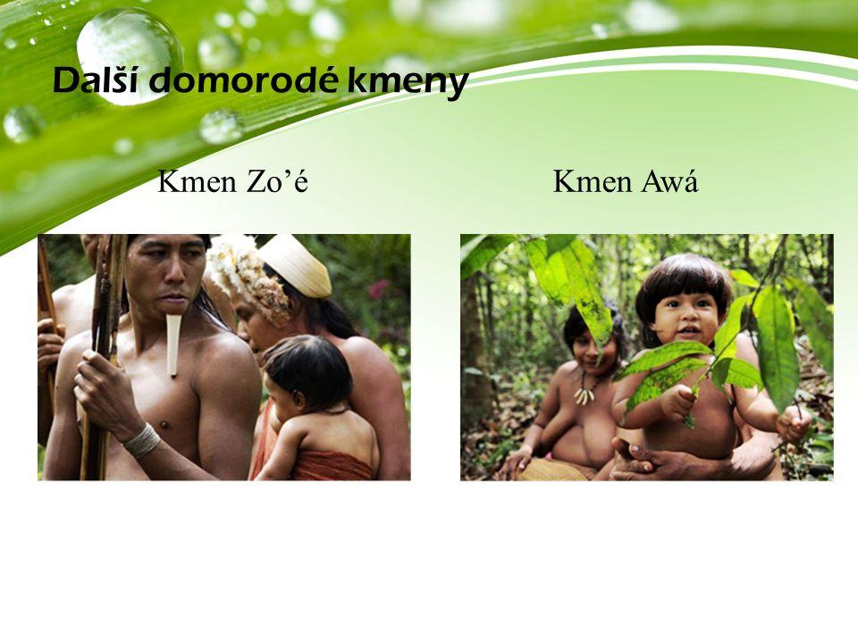 Další domorodé kmeny Kmen Zo'éKmen Awá