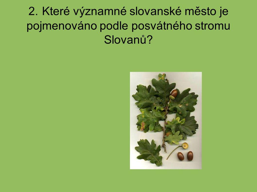 2. Které významné slovanské město je pojmenováno podle posvátného stromu Slovanů?