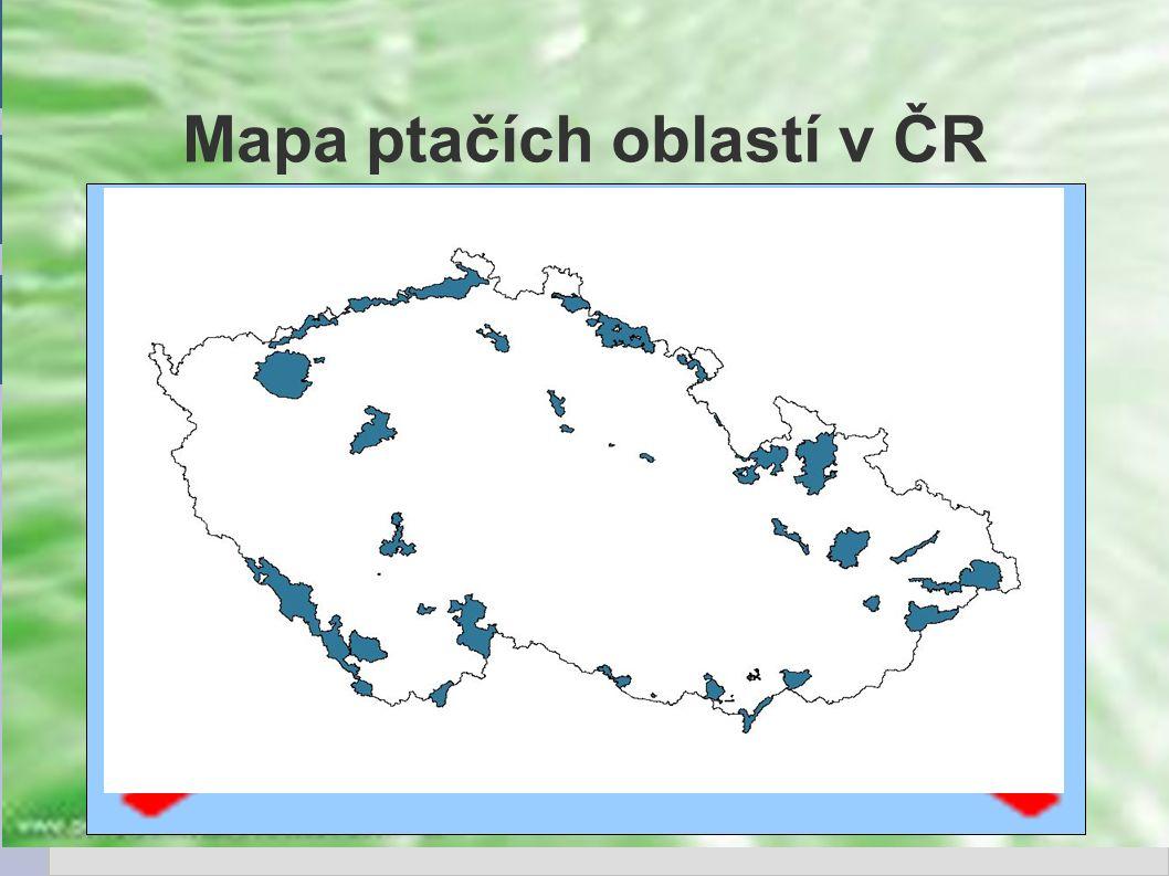 Mapa ptačích oblastí v ČR