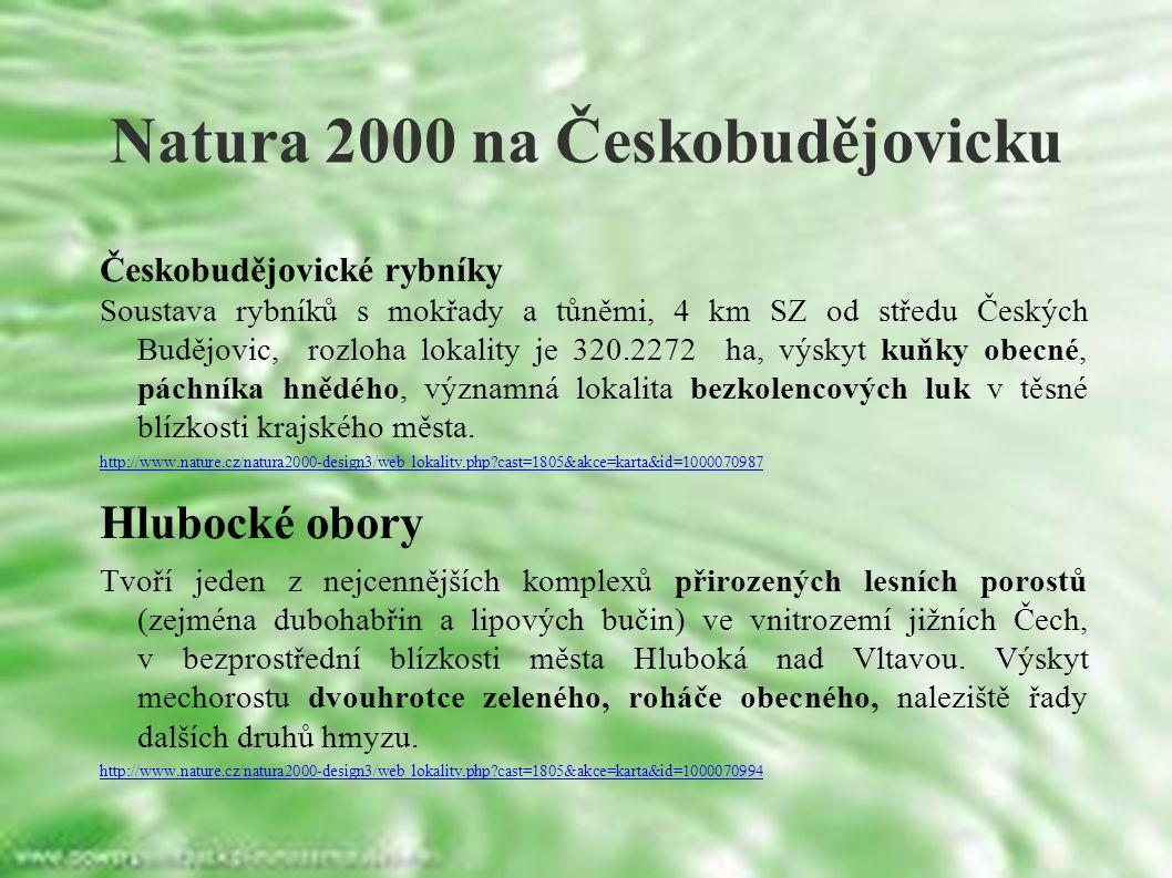 Natura 2000 na Českobudějovicku Českobudějovické rybníky Soustava rybníků s mokřady a tůněmi, 4 km SZ od středu Českých Budějovic, rozloha lokality je 320.2272 ha, výskyt kuňky obecné, páchníka hnědého, významná lokalita bezkolencových luk v těsné blízkosti krajského města.