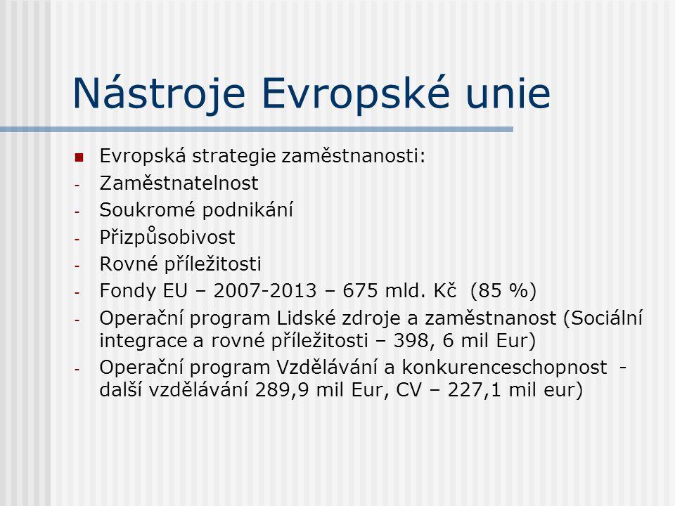 Nástroje Evropské unie Evropská strategie zaměstnanosti: - Zaměstnatelnost - Soukromé podnikání - Přizpůsobivost - Rovné příležitosti - Fondy EU – 2007-2013 – 675 mld.