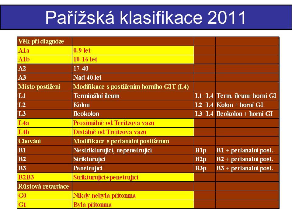 Pařížská klasifikace 2011