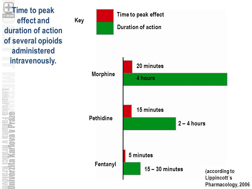 Key Time to peak effect Duration of action 20 minutes 4 hours 15 minutes 2 – 4 hours 5 minutes 15 – 30 minutes Morphine Pethidine Fentanyl (according