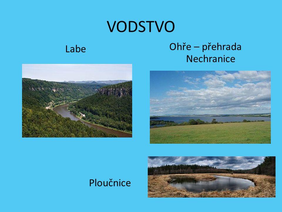 Krušné hory Česká tabule – hora Říp