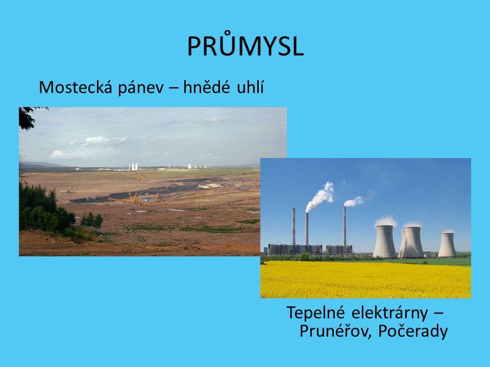 ZEMĚDĚLSTVÍ Polabí a Poohří – ovocnářské oblasti Žatec, Lounsko-Litoměřicko - chmel