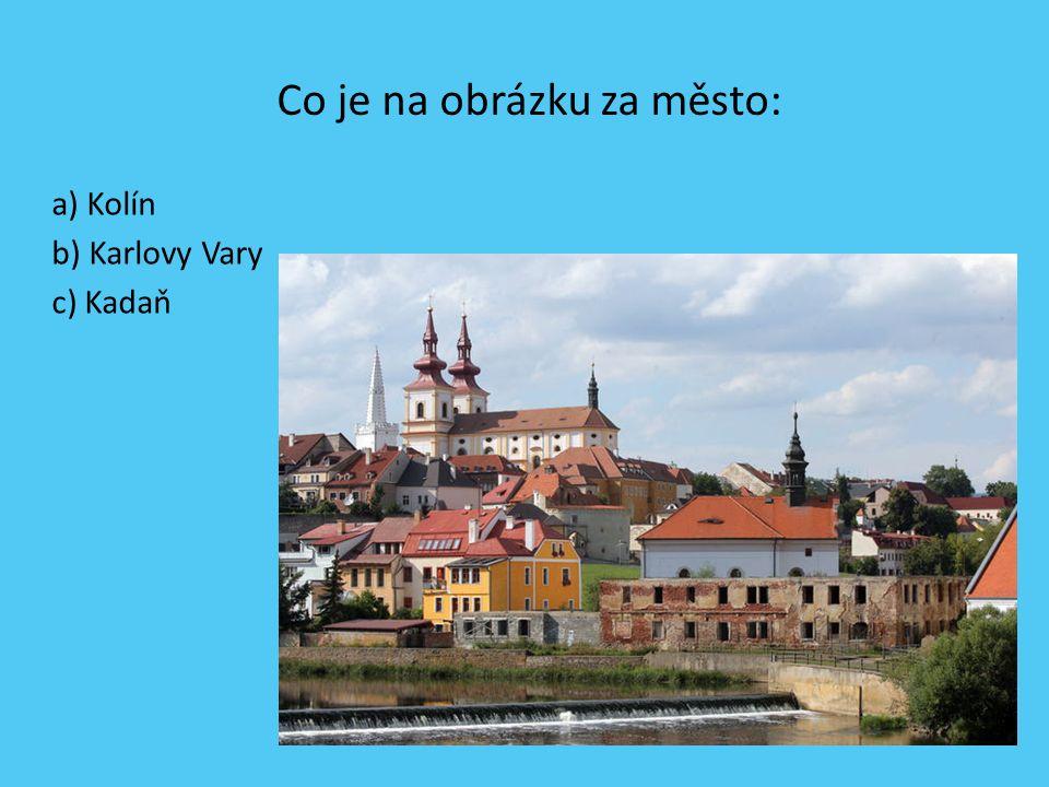 Dominanta Českého Švýcarska se nazývá: a) Pravá brána b) Pravčická brána c) Pravdivá brána