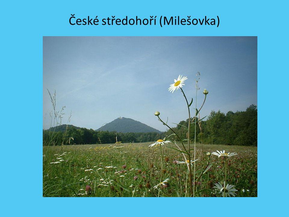 POVRCH Polabská nížina