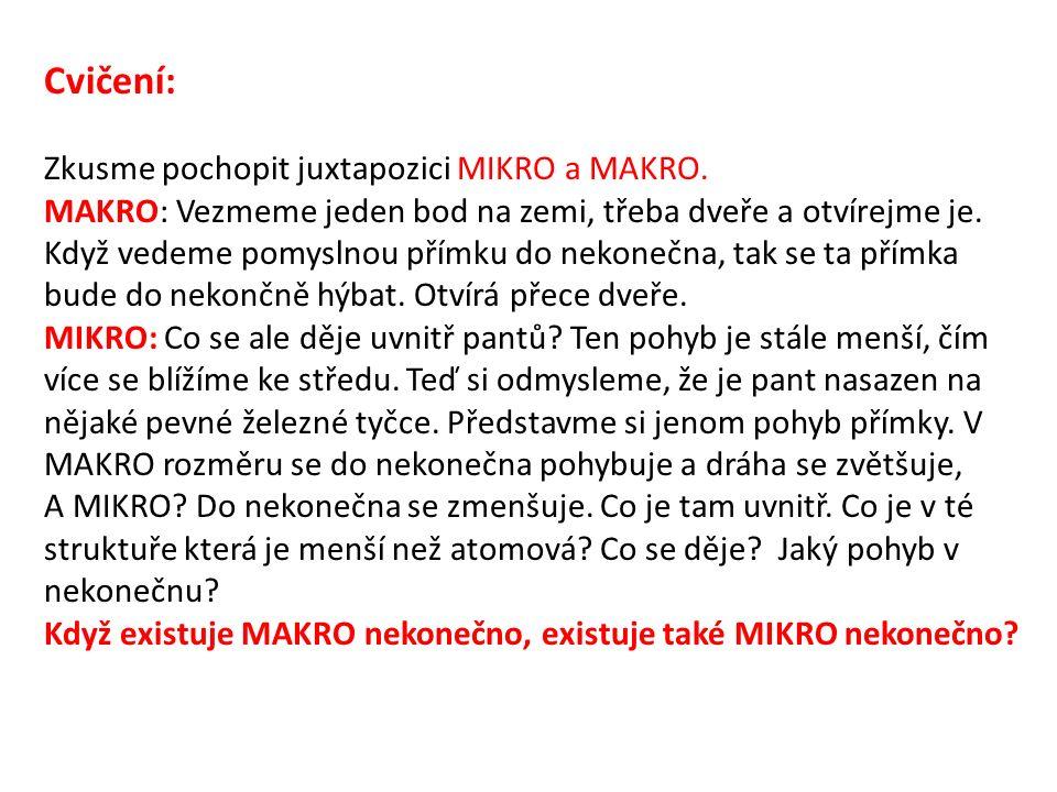Cvičení: Zkusme pochopit juxtapozici MIKRO a MAKRO.