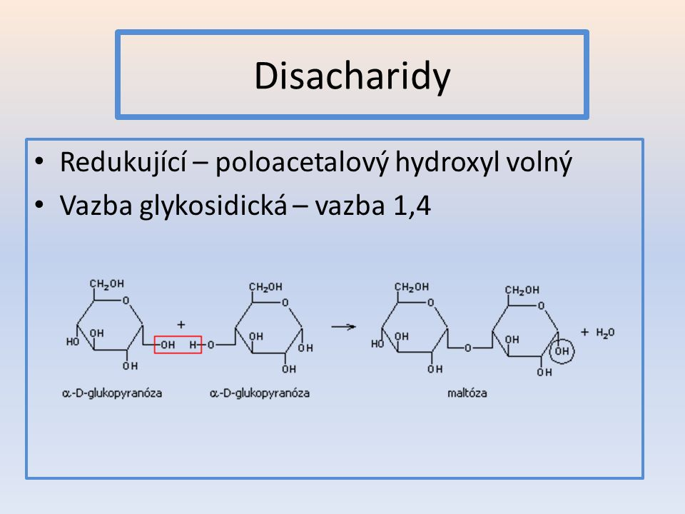 Disacharidy Redukující – poloacetalový hydroxyl volný Vazba glykosidická – vazba 1,4
