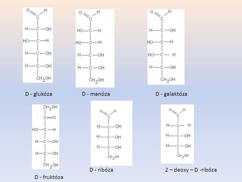 D - glukózaD - manózaD - galaktóza D - fruktóza D - ribóza2 – deoxy – D -ribóza