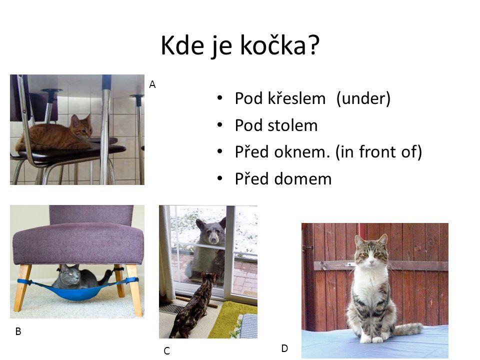 Kde je kočka Pod křeslem (under) Pod stolem Před oknem. (in front of) Před domem A B C D