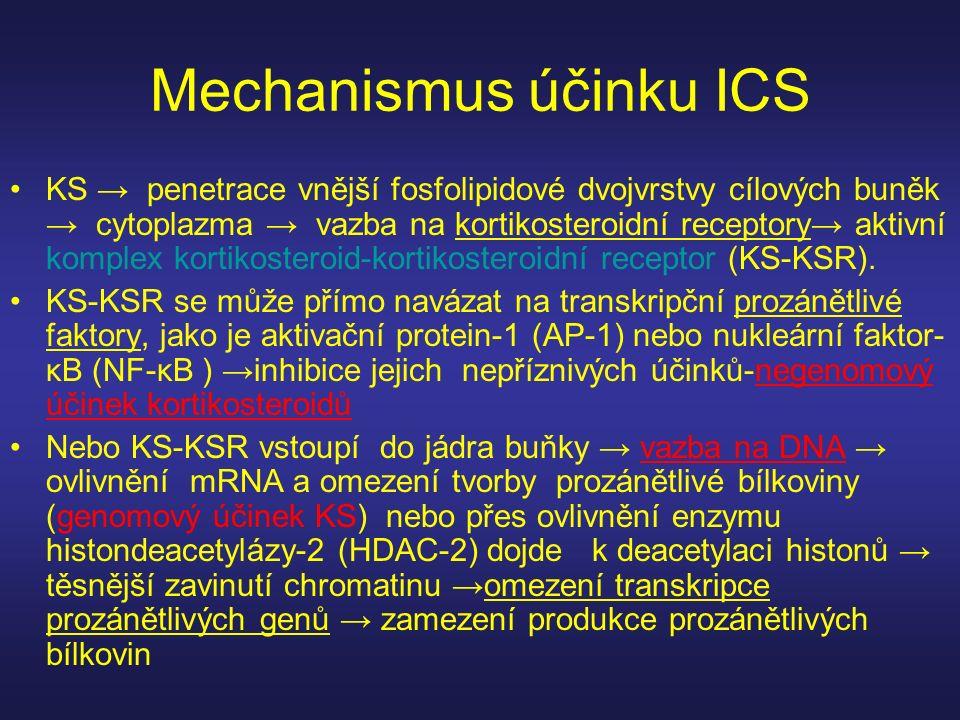 Mechanismus účinku ICS KS → penetrace vnější fosfolipidové dvojvrstvy cílových buněk → cytoplazma → vazba na kortikosteroidní receptory→ aktivní kompl
