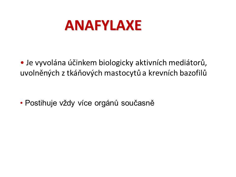 ANAFYLAXE Je vyvolána účinkem biologicky aktivních mediátorů, uvolněných z tkáňových mastocytů a krevních bazofilů Postihuje vždy více orgánů současně