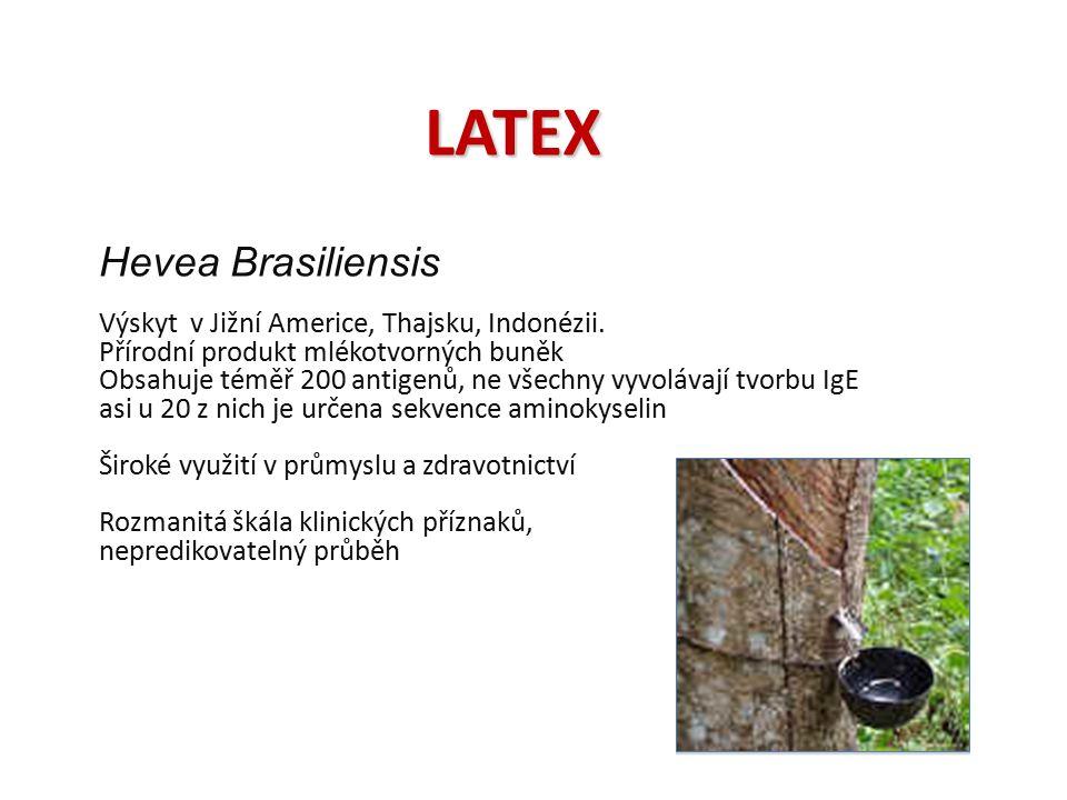 LATEX Hevea Brasiliensis Výskyt v Jižní Americe, Thajsku, Indonézii. Přírodní produkt mlékotvorných buněk Obsahuje téměř 200 antigenů, ne všechny vyvo