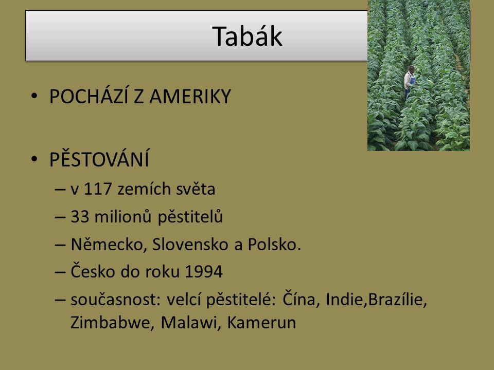 Tabák POCHÁZÍ Z AMERIKY PĚSTOVÁNÍ – v 117 zemích světa – 33 milionů pěstitelů – Německo, Slovensko a Polsko. – Česko do roku 1994 – současnost: velcí