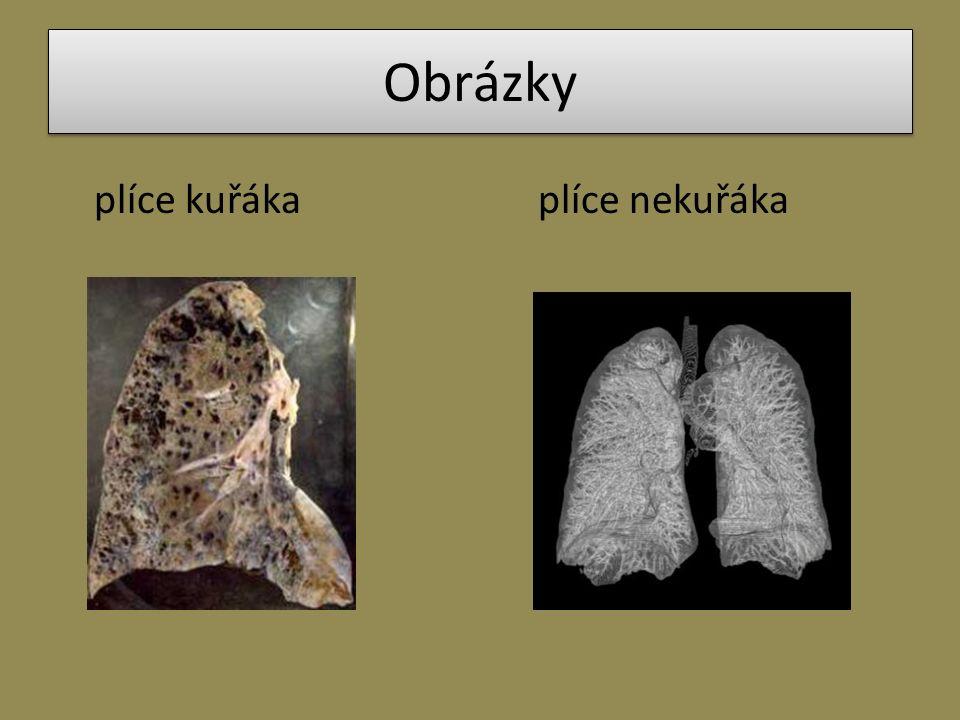 Obrázky plíce kuřákaplíce nekuřáka