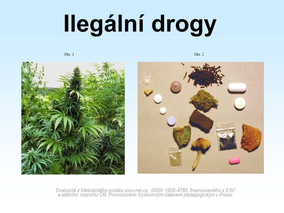 Ilegální drogy Dostupné z Metodického portálu www.rvp.cz, ISSN: 1802-4785, financovaného z ESF a státního rozpočtu ČR.