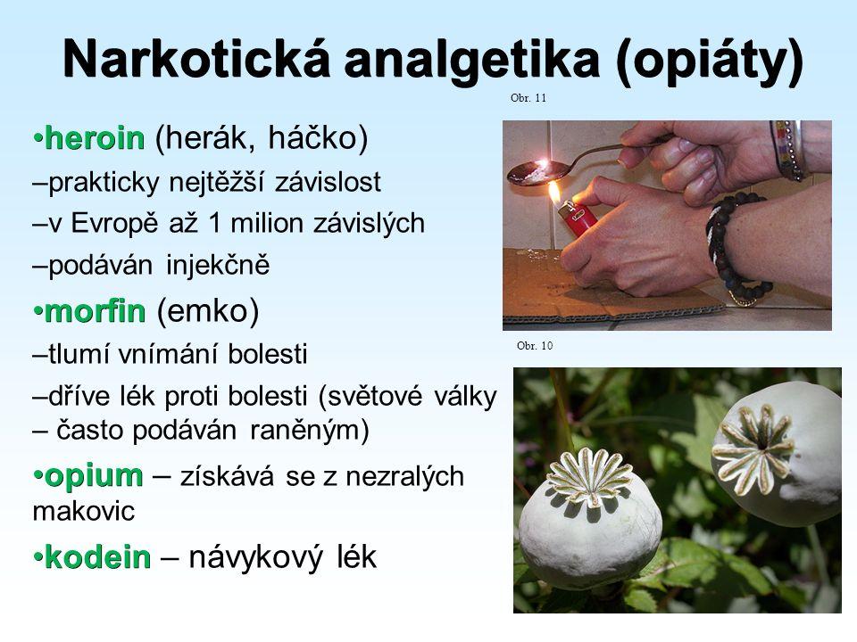 Narkotická analgetika (opiáty) heroinheroin (herák, háčko) –prakticky nejtěžší závislost –v Evropě až 1 milion závislých –podáván injekčně morfinmorfin (emko) –tlumí vnímání bolesti –dříve lék proti bolesti (světové války – často podáván raněným) opiumopium – získává se z nezralých makovic kodeinkodein – návykový lék Obr.
