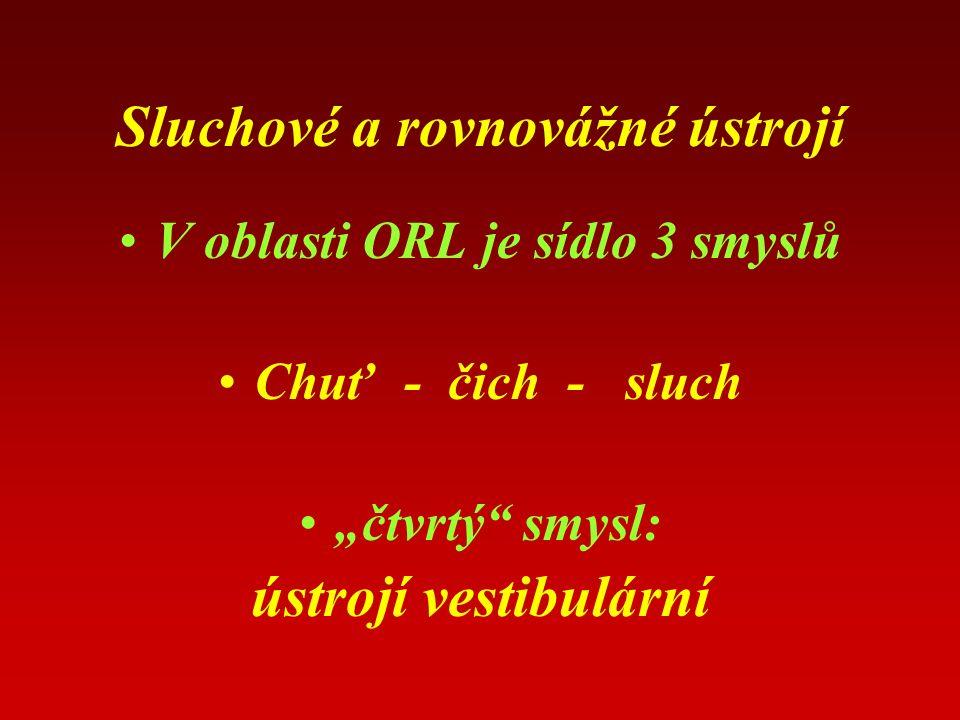 """Sluchové a rovnovážné ústrojí V oblasti ORL je sídlo 3 smyslů Chuť - čich - sluch """"čtvrtý smysl: ústrojí vestibulární"""