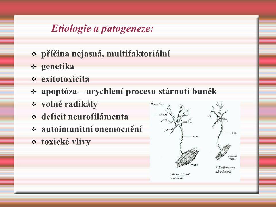 Etiologie a patogeneze:  příčina nejasná, multifaktoriální  genetika  exitotoxicita  apoptóza – urychlení procesu stárnutí buněk  volné radikály  deficit neurofilámenta  autoimunitní onemocnění  toxické vlivy