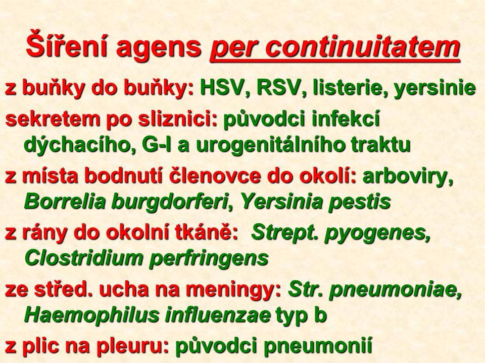 Šíření agens per continuitatem z buňky do buňky: HSV, RSV, listerie, yersinie sekretem po sliznici: původci infekcí dýchacího, G-I a urogenitálního traktu z místa bodnutí členovce do okolí: arboviry, Borrelia burgdorferi, Yersinia pestis z rány do okolní tkáně: Strept.