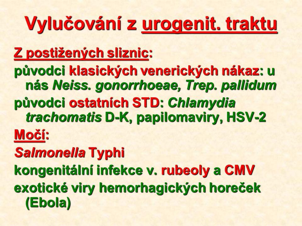 Vylučování z urogenit.