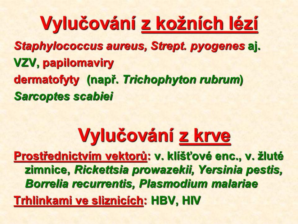 Vylučování z kožních lézí Staphylococcus aureus, Strept.