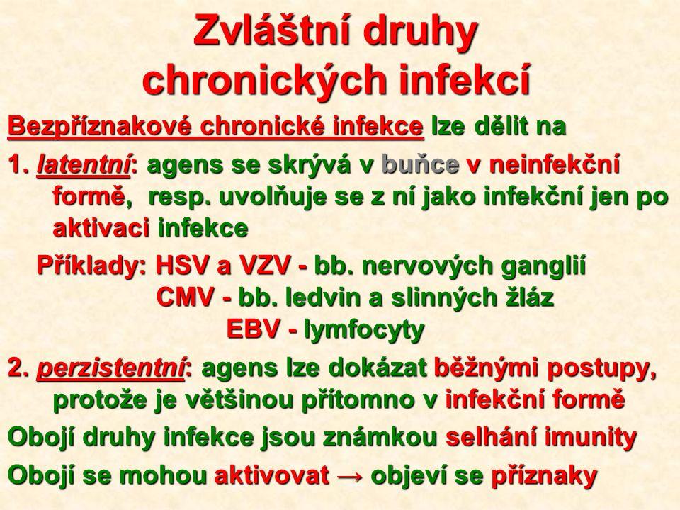 Zvláštní druhy chronických infekcí Bezpříznakové chronické infekce lze dělit na 1.