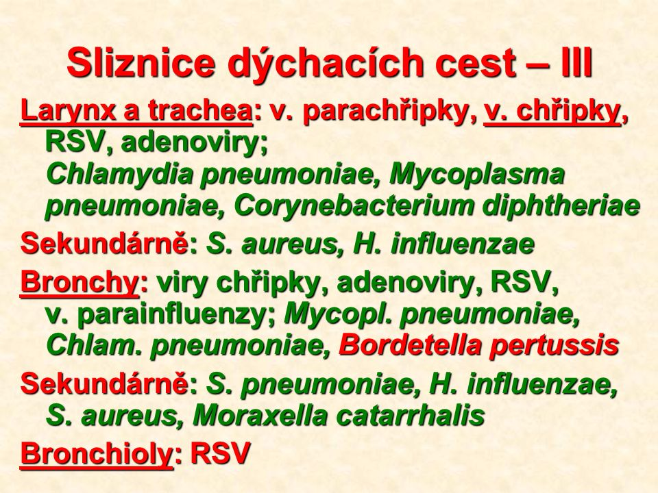Plíce Bronchopneumonie: S.pneumoniae, S. aureus, H.