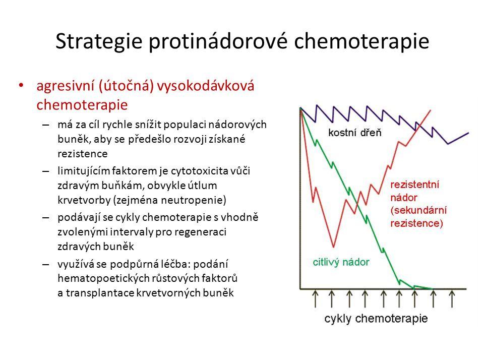 Strategie protinádorové chemoterapie agresivní (útočná) vysokodávková chemoterapie – má za cíl rychle snížit populaci nádorových buněk, aby se předešlo rozvoji získané rezistence – limitujícím faktorem je cytotoxicita vůči zdravým buňkám, obvykle útlum krvetvorby (zejména neutropenie) – podávají se cykly chemoterapie s vhodně zvolenými intervaly pro regeneraci zdravých buněk – využívá se podpůrná léčba: podání hematopoetických růstových faktorů a transplantace krvetvorných buněk