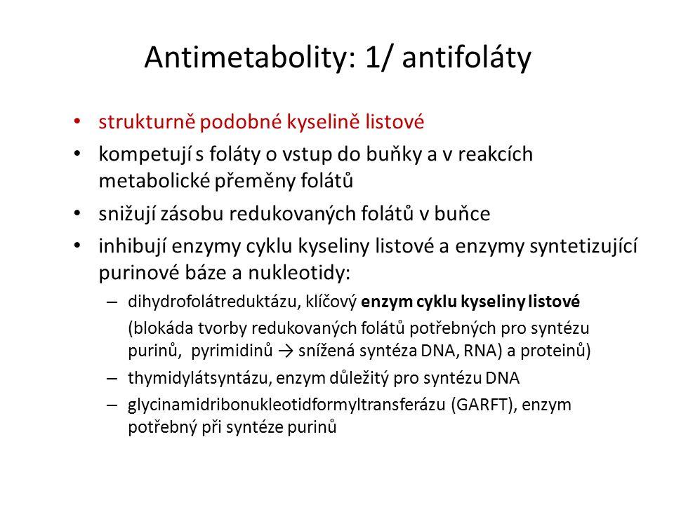Antimetabolity: 1/ antifoláty strukturně podobné kyselině listové kompetují s foláty o vstup do buňky a v reakcích metabolické přeměny folátů snižují zásobu redukovaných folátů v buňce inhibují enzymy cyklu kyseliny listové a enzymy syntetizující purinové báze a nukleotidy: – dihydrofolátreduktázu, klíčový enzym cyklu kyseliny listové (blokáda tvorby redukovaných folátů potřebných pro syntézu purinů, pyrimidinů → snížená syntéza DNA, RNA) a proteinů) – thymidylátsyntázu, enzym důležitý pro syntézu DNA – glycinamidribonukleotidformyltransferázu (GARFT), enzym potřebný při syntéze purinů