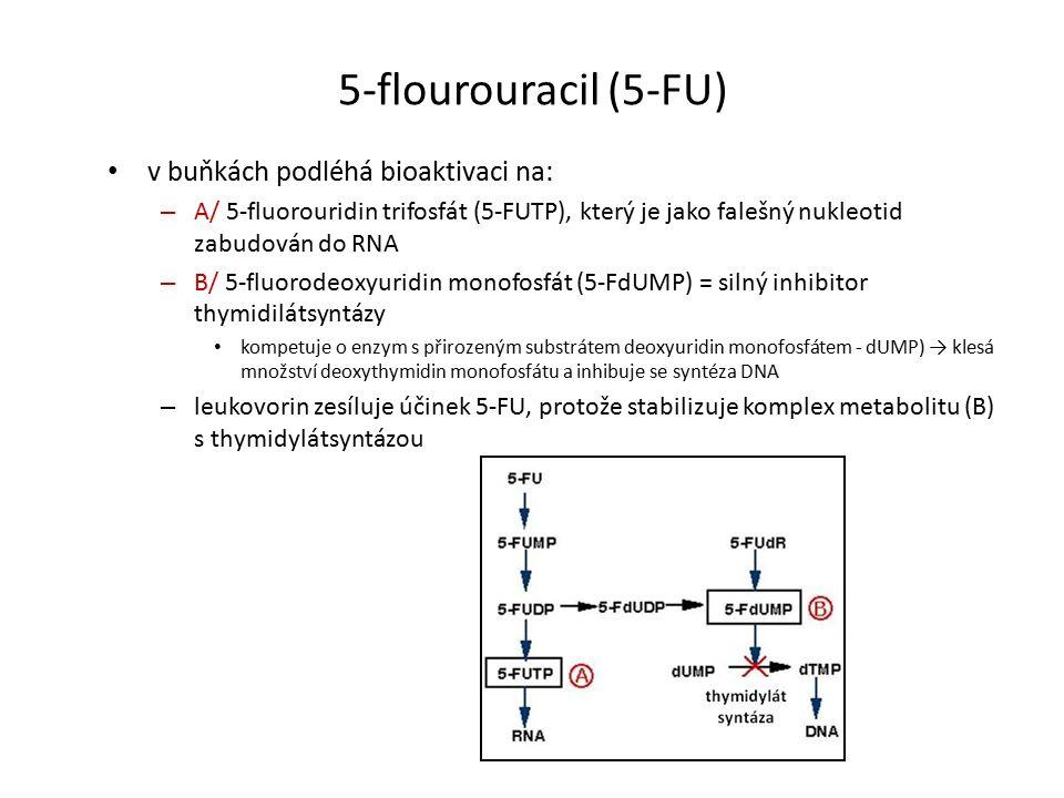 5-flourouracil (5-FU) v buňkách podléhá bioaktivaci na: – A/ 5-fluorouridin trifosfát (5-FUTP), který je jako falešný nukleotid zabudován do RNA – B/ 5-fluorodeoxyuridin monofosfát (5-FdUMP) = silný inhibitor thymidilátsyntázy kompetuje o enzym s přirozeným substrátem deoxyuridin monofosfátem - dUMP) → klesá množství deoxythymidin monofosfátu a inhibuje se syntéza DNA – leukovorin zesíluje účinek 5-FU, protože stabilizuje komplex metabolitu (B) s thymidylátsyntázou