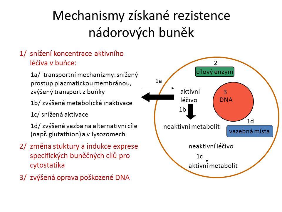 Mechanismy získané rezistence nádorových buněk 1/ snížení koncentrace aktivního léčiva v buňce: 1a/ transportní mechanizmy: snížený prostup plazmatickou membránou, zvýšený transport z buňky 1b/ zvýšená metabolická inaktivace 1c/ snížená aktivace 1d/ zvýšená vazba na alternativní cíle (např.