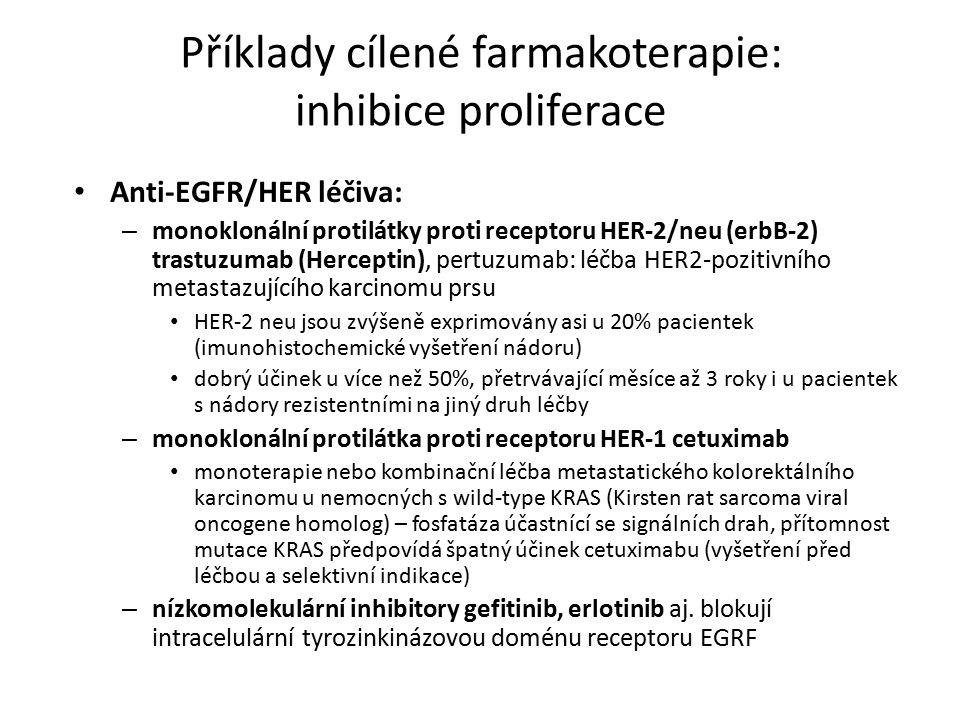 Příklady cílené farmakoterapie: inhibice proliferace Anti-EGFR/HER léčiva: – monoklonální protilátky proti receptoru HER-2/neu (erbB-2) trastuzumab (Herceptin), pertuzumab: léčba HER2-pozitivního metastazujícího karcinomu prsu HER-2 neu jsou zvýšeně exprimovány asi u 20% pacientek (imunohistochemické vyšetření nádoru) dobrý účinek u více než 50%, přetrvávající měsíce až 3 roky i u pacientek s nádory rezistentními na jiný druh léčby – monoklonální protilátka proti receptoru HER-1 cetuximab monoterapie nebo kombinační léčba metastatického kolorektálního karcinomu u nemocných s wild-type KRAS (Kirsten rat sarcoma viral oncogene homolog) – fosfatáza účastnící se signálních drah, přítomnost mutace KRAS předpovídá špatný účinek cetuximabu (vyšetření před léčbou a selektivní indikace) – nízkomolekulární inhibitory gefitinib, erlotinib aj.