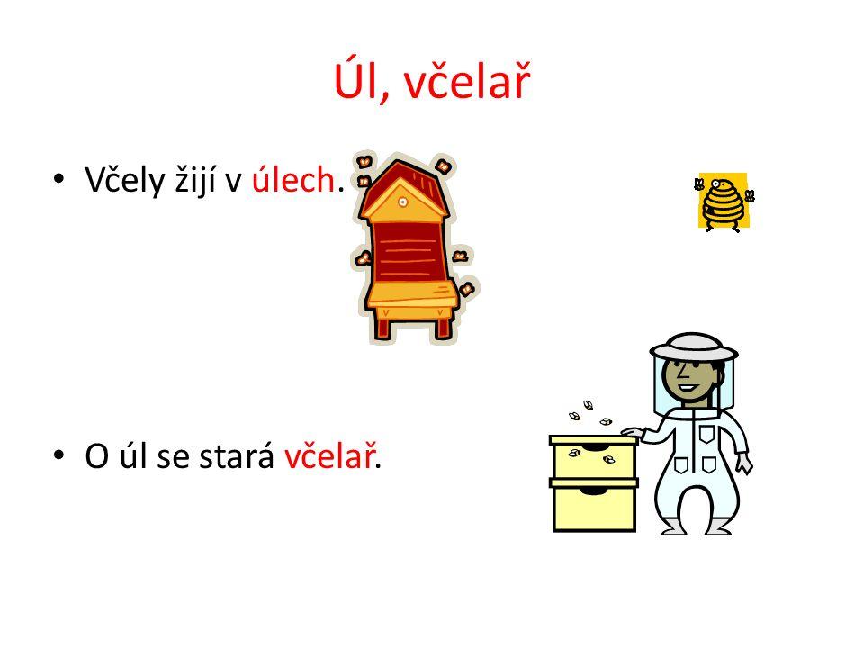 VČELA MEDONOSNÁ Včelky asi všichni znáte.