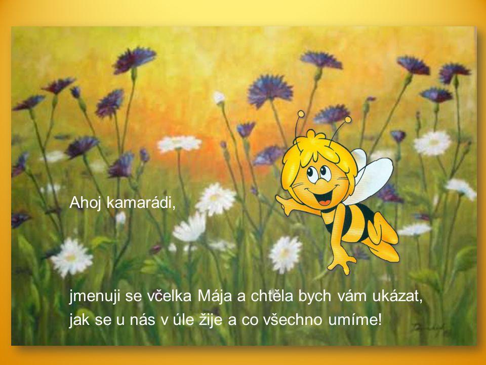 Ahoj kamarádi, jmenuji se včelka Mája a chtěla bych vám ukázat, jak se u nás v úle žije a co všechno umíme!