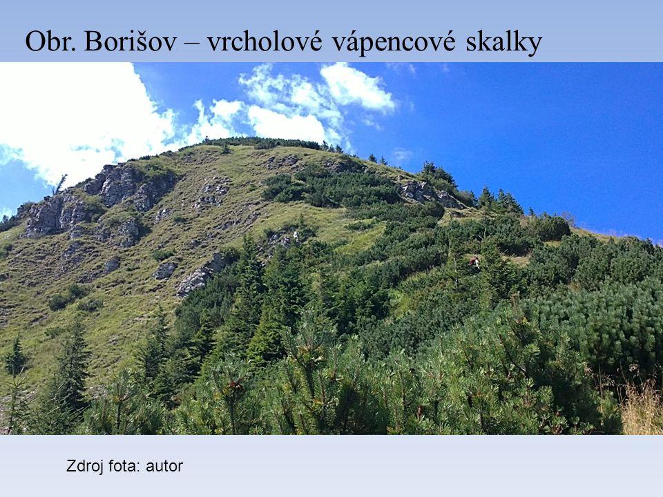 Obr. Borišov – vrcholové vápencové skalky Zdroj fota: autor