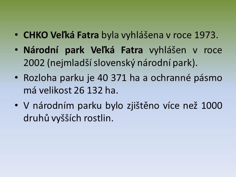 CHKO Veľká Fatra byla vyhlášena v roce 1973.