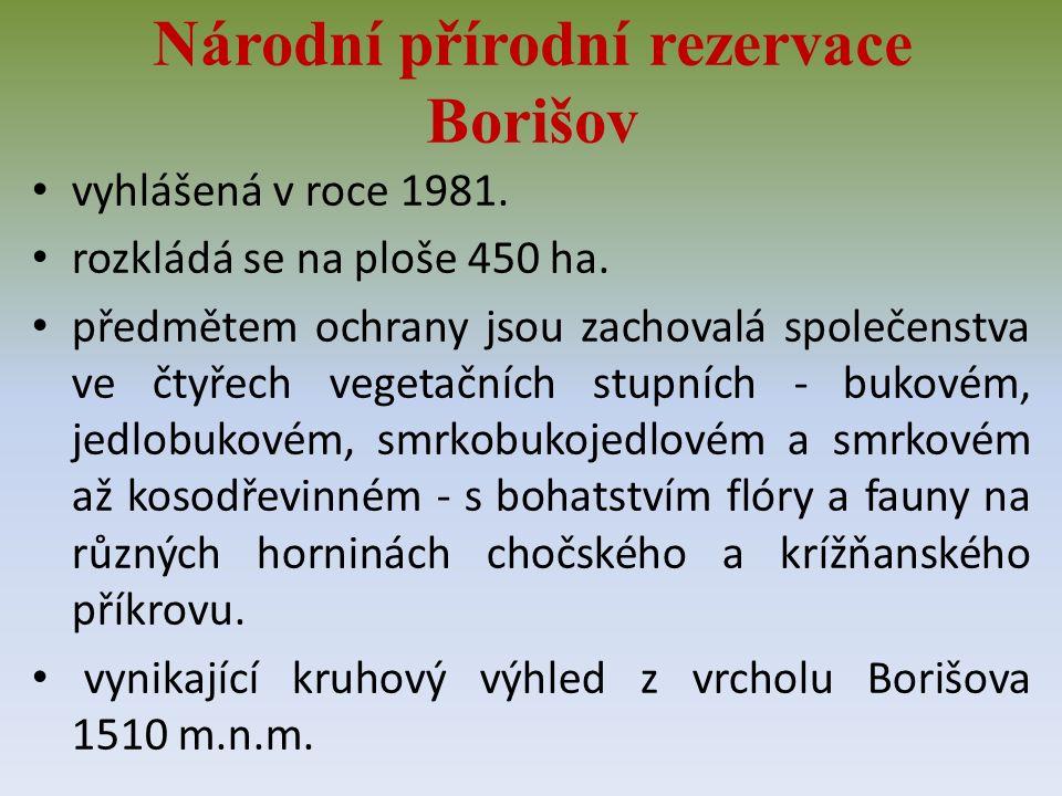 Národní přírodní rezervace Borišov vyhlášená v roce 1981.