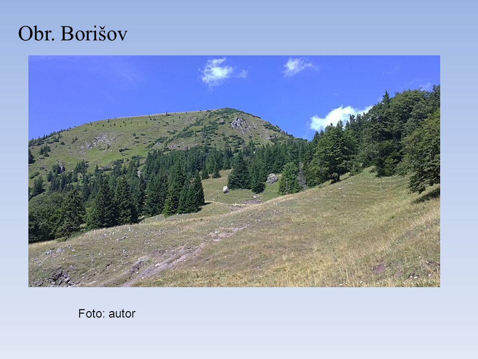 Obr. Borišov Foto: autor
