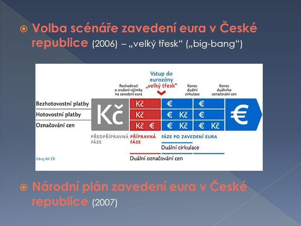 """ Volba scénáře zavedení eura v České republice (2006) – """"velký třesk (""""big-bang )  Národní plán zavedení eura v České republice (2007)"""