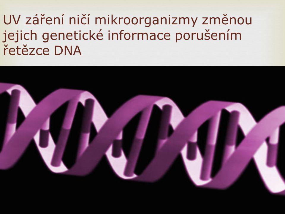 UV záření ničí mikroorganizmy změnou jejich genetické informace porušením řetězce DNA