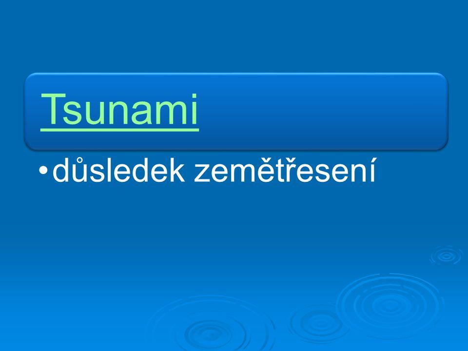 Tsunami důsledek zemětřesení